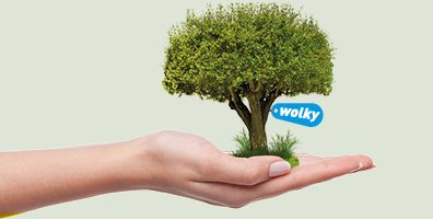 Wolky_FBO_trees for all
